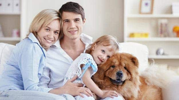 Wills & Trusts dog-young-family Direct Wills Fleet